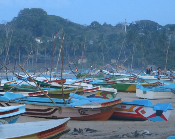 Fishing boats in Arugam Bay