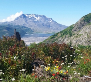 Mt. St. Helens and Spirit Lake 2014 from Norway Pass trail