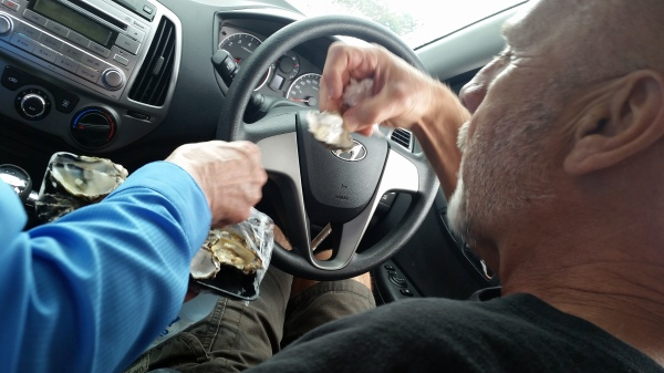 blog eating oysters in car 2