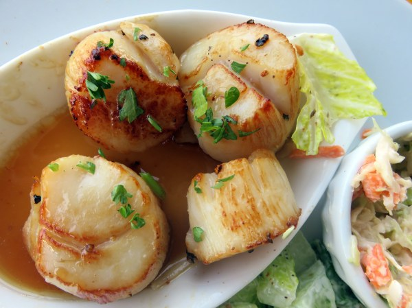 Nova Scotia scallops
